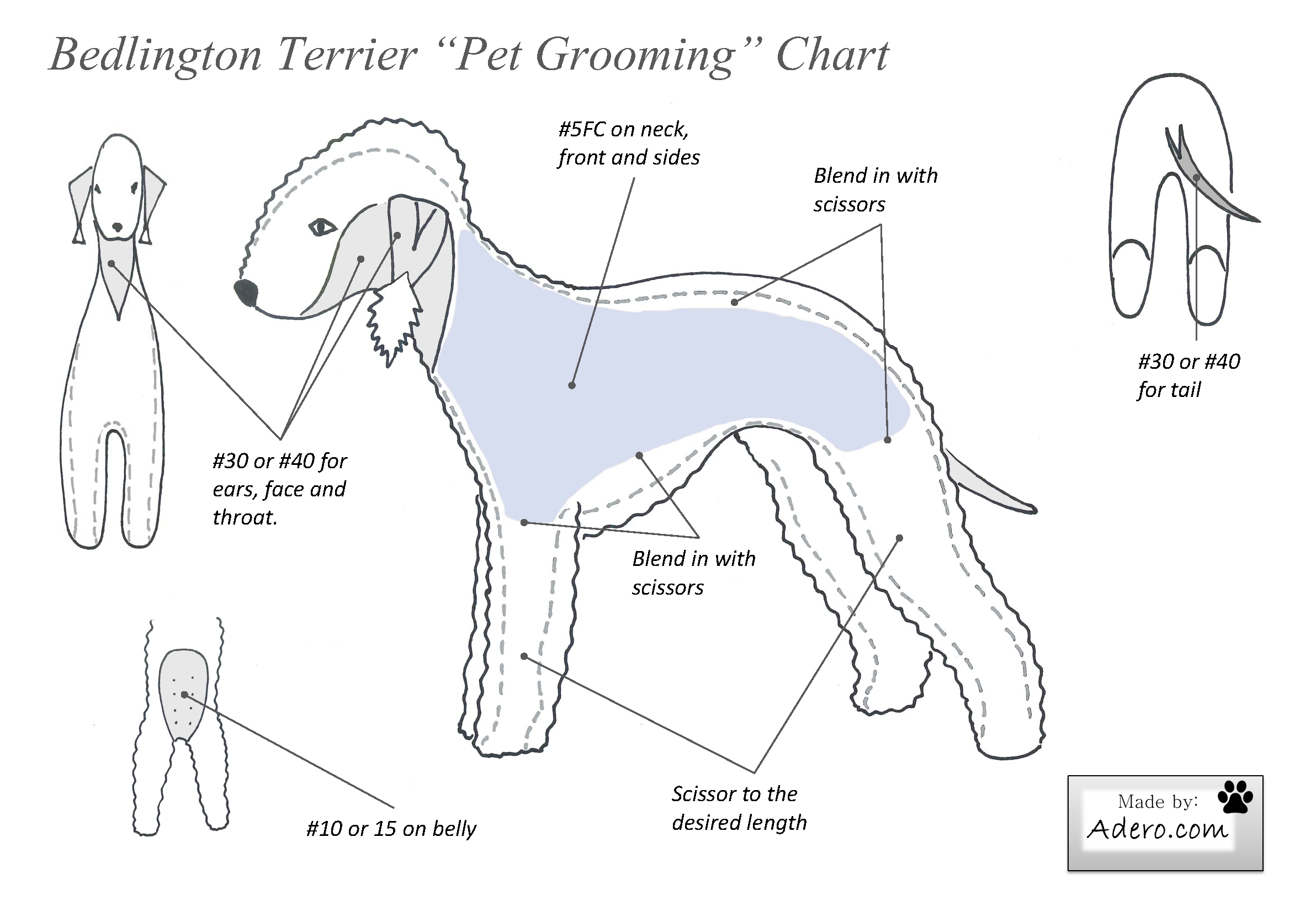 Dog Grooming Course In Ontario